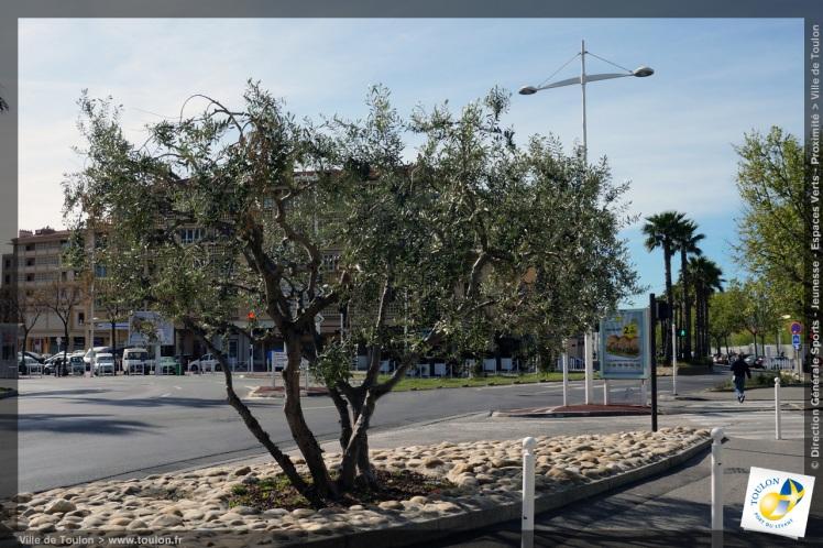Rond-Point Toulon