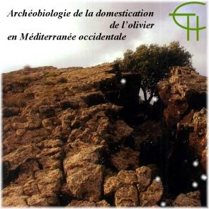 2009-b03-archeobiologie-de-la-domestication-de-l-olivier-en-mediterranee-occidentale[1]